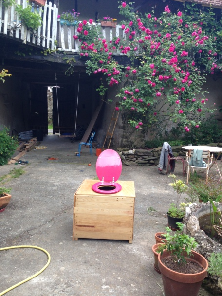 The rose pink toilet